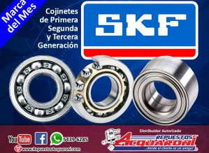 Acquaroni SKF 29-06