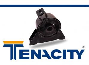 tenacity-para-blog